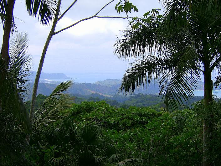 Costa Rica, Pacific side.
